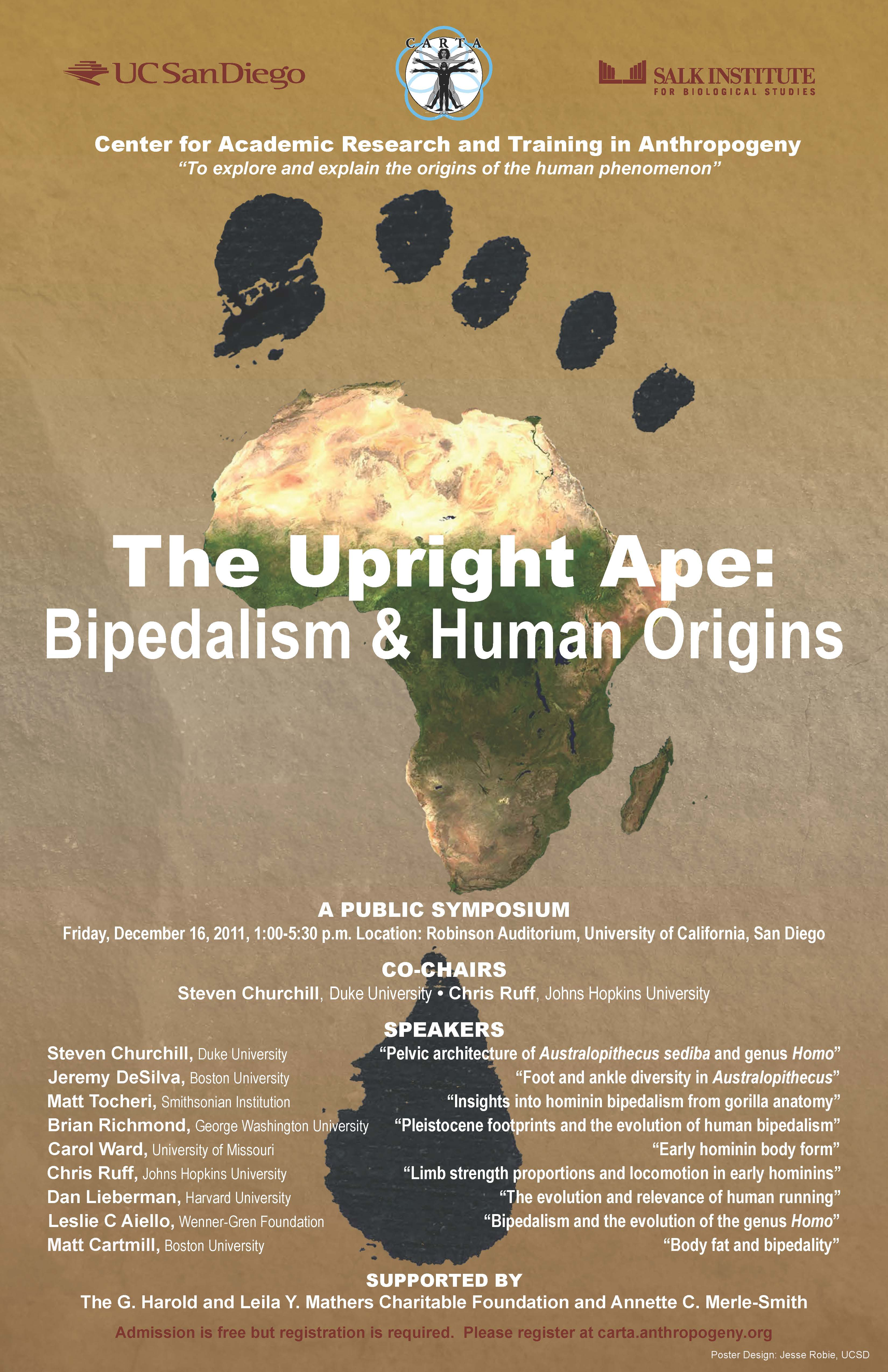 The Upright Ape: Bipedalism and Human Origins | Center for Academic ...